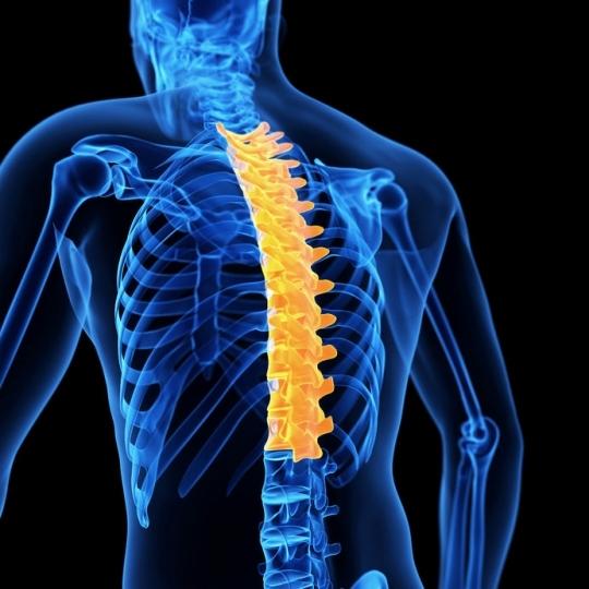 Postępowanie w przypadku dolegliwości bólowych kręgosłupa